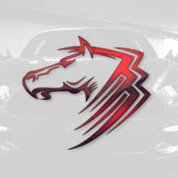 S550 Ford Mustang Hacks